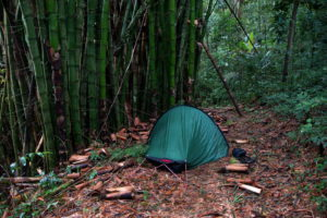 Zeltplatz im Dschungel