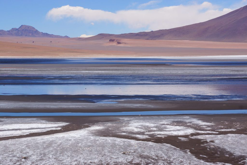 Am Salar de Aguas Calientes, im chilenischen Altiplano