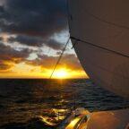 Leben auf hoher See