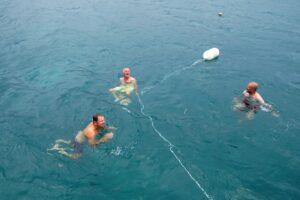 Schwimmen vor Marie-Galante